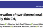 Nature Physics: 低溫恒溫器成功助力強磁場拉曼實現單層CrI3中二維磁振子的直接觀測