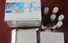 上海劲马最新为您公布ELISA试剂盒定性检测方法