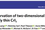 Nature Physics: 低温恒温器成功助力强磁场拉曼实现单层CrI3中二维磁振子的直接观测