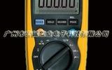 防水数字万用表DT-9919
