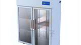 CX-800L单开门层析冷柜