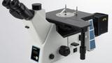 研究级倒置金相显微镜FX-41M系列高教材料研究专用