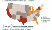大数据解析:哪些大学和专业最受中国留学生追捧