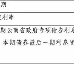 云南发出首只高校专项债券 筹10亿为建校舍