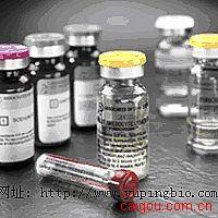 人生长抑素(somatostatin)ELISA试剂盒