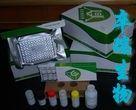 大鼠组织因子途径抑制物(TFPI)Elisa试剂盒