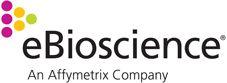 anti-mouse CD8a FG Biotin 53-6.7