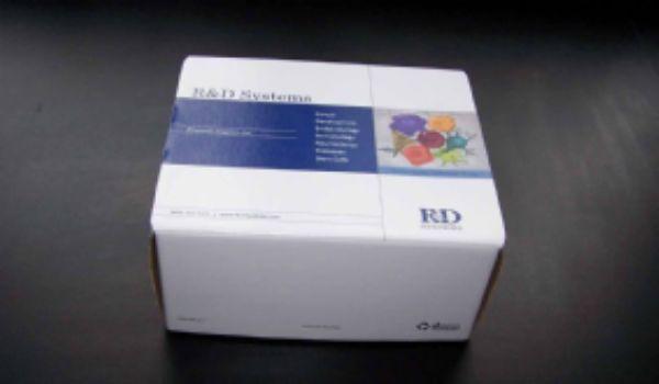 大鼠新生甲状腺素(NN-T4)ELISA试剂盒