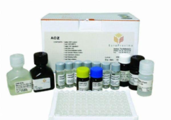 小鼠αN已酰氨基葡糖苷酶(αNAG)ELISA试剂盒