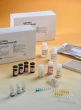 硫酸肝素糖蛋白ELISA试剂盒厂家代测,进口人(HSPG)ELISA Kit说明书