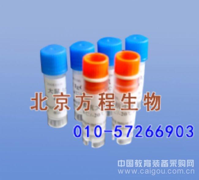 大鼠β淀粉样蛋白1-40(Aβ1-40)ELISA法