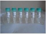 705973-69-9标准品,14BETA-苯甲酰基氧基-2-脱乙酰基巴卡丁VI