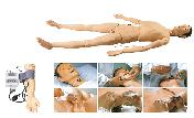 美国KETT电子人体气管插管训练模型(男性)