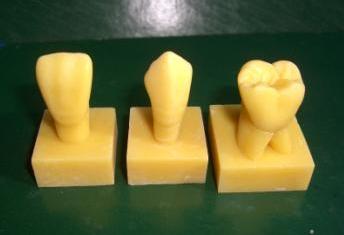 雕磨牙的步骤图解
