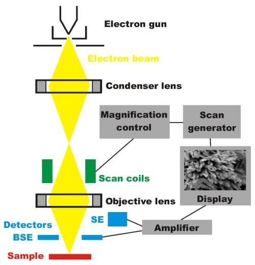 扫描电镜之主要性能参数解析