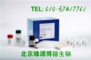 人腺苷三磷酸结合盒转运体A1 Elisa kit价格,ABCA1进口试剂盒说明书
