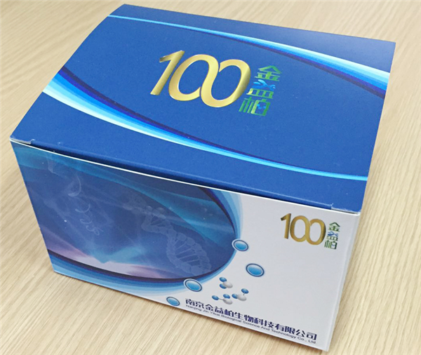 大鼠sIL-1RⅡELISA试剂盒